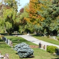 cemetery-autumn-10